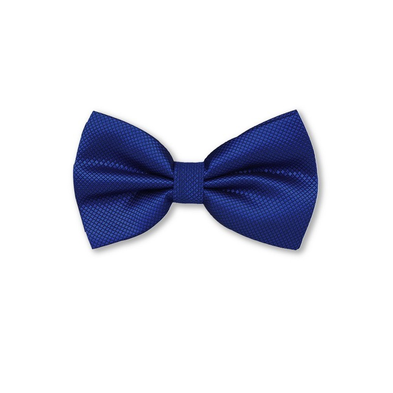 Noeud papillon bleu-roi