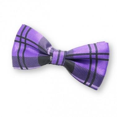 Noeud papillon violet tendance écossais